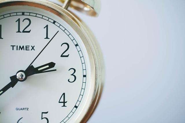 timex quartz watch white dial
